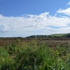 Kirkconnel Flow, Szkocja