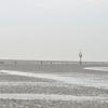Morze Wattowe