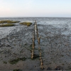 Morze Wattowe / Wattenmeer
