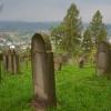 cmentarz-zydowski-w-bobowej_2