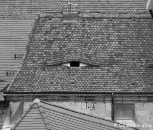 Oczy kamieniec w Pirnie