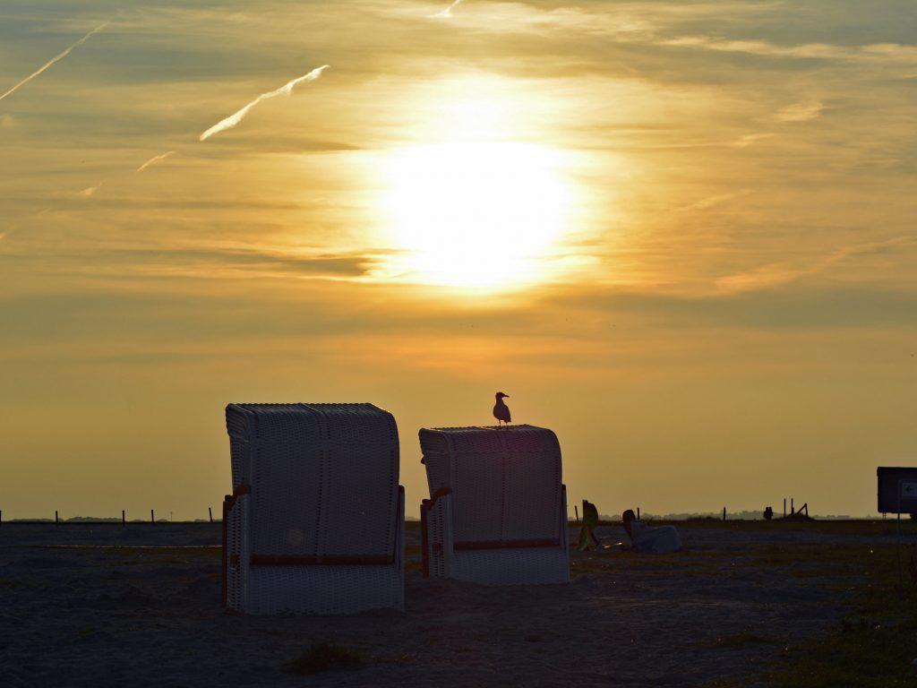 Nad Morzem Wattowym o zachodzie słońca