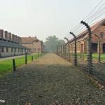 KL Auschwitz