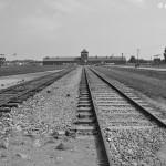 Birkenau - wartownia i brama główna, widok z rampy wewnątrz obozu