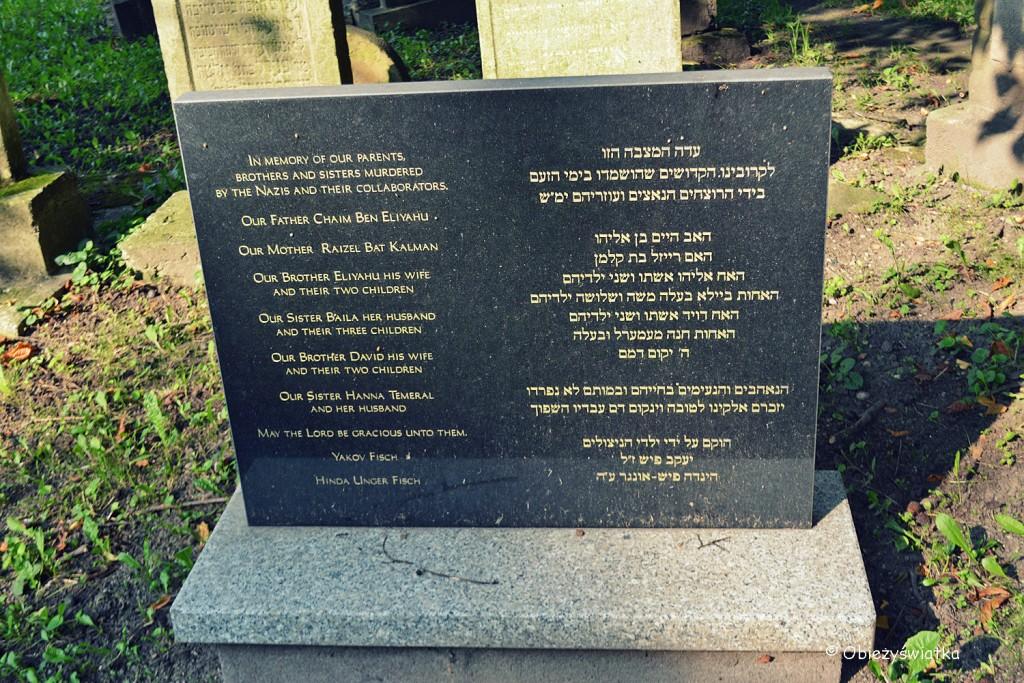 Nagrobki na cmentarzu żydowskim w Tarnowie