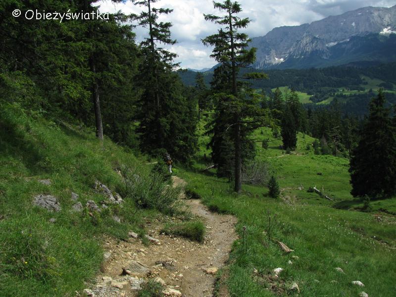 Na alpejskim szlaku