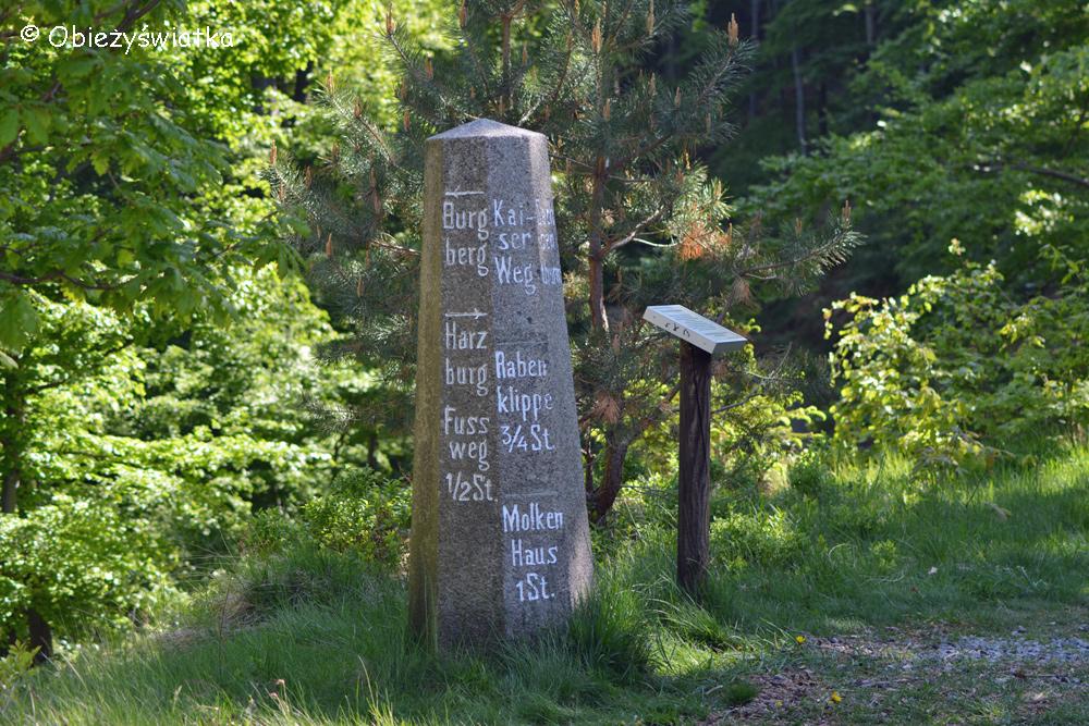 Na szlaku w Harzu