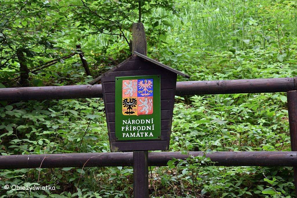 Na szlaku do Bramy Pravčickiej, Czeska Szwajcaria, Góry Połabskie