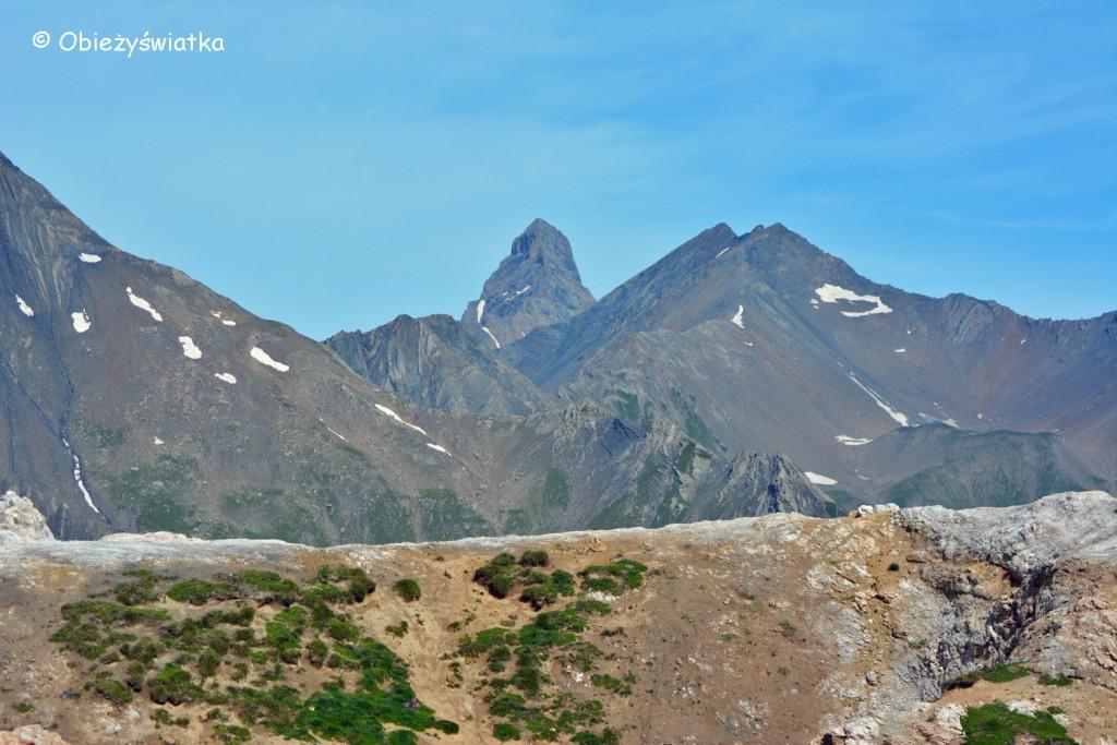 Aiguilles d'Arves - 3541 m n.p.m., widok z Col du Galibier, Alpy, Francja