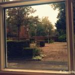 Spójrz przez okno...