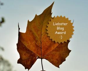 Liebster Blog Award 2015