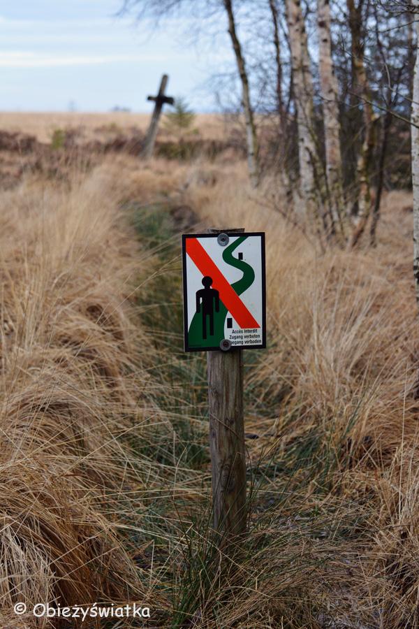 Natura ma pierwszeństwo..., Hautes Fagnes/Hohes Venn - belgijski park krajobrazowy