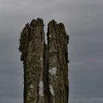 Jeden z kamieni Ring of Brodgar, Orkady, Szkocja