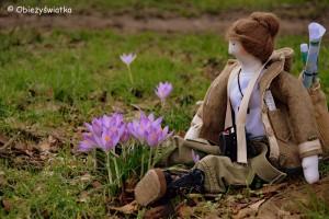 Tilda-Obieżyświatka cieszy się wiosną w lutym i wącha krokusy;)