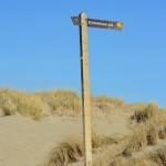 Szlakiem przez wydmy, Texel