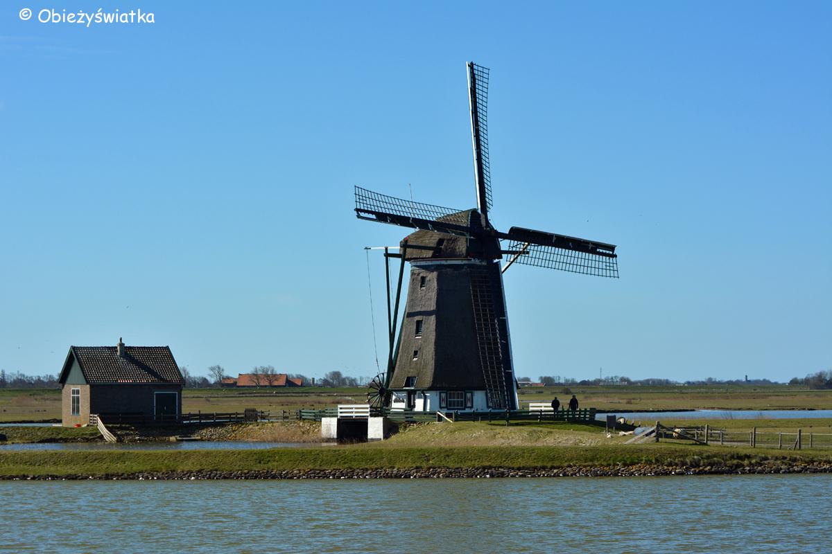 Texel-Wiatraki