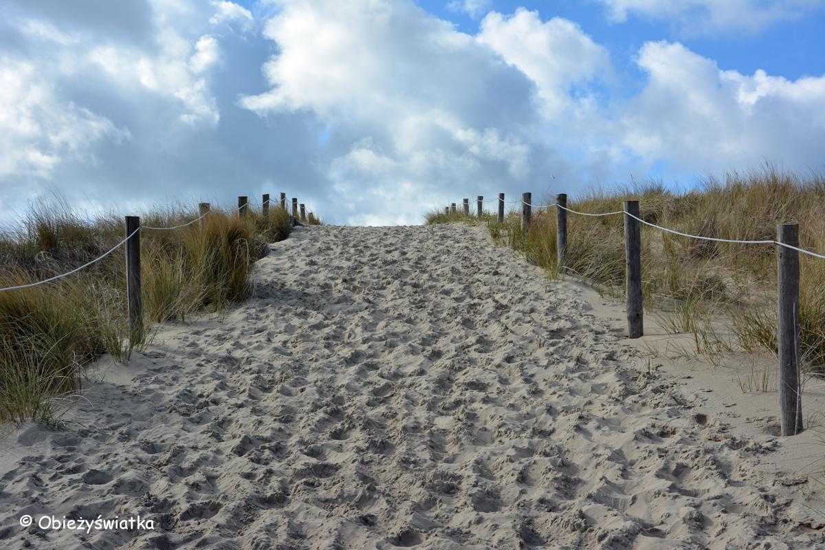 Texel-Wydmy-2