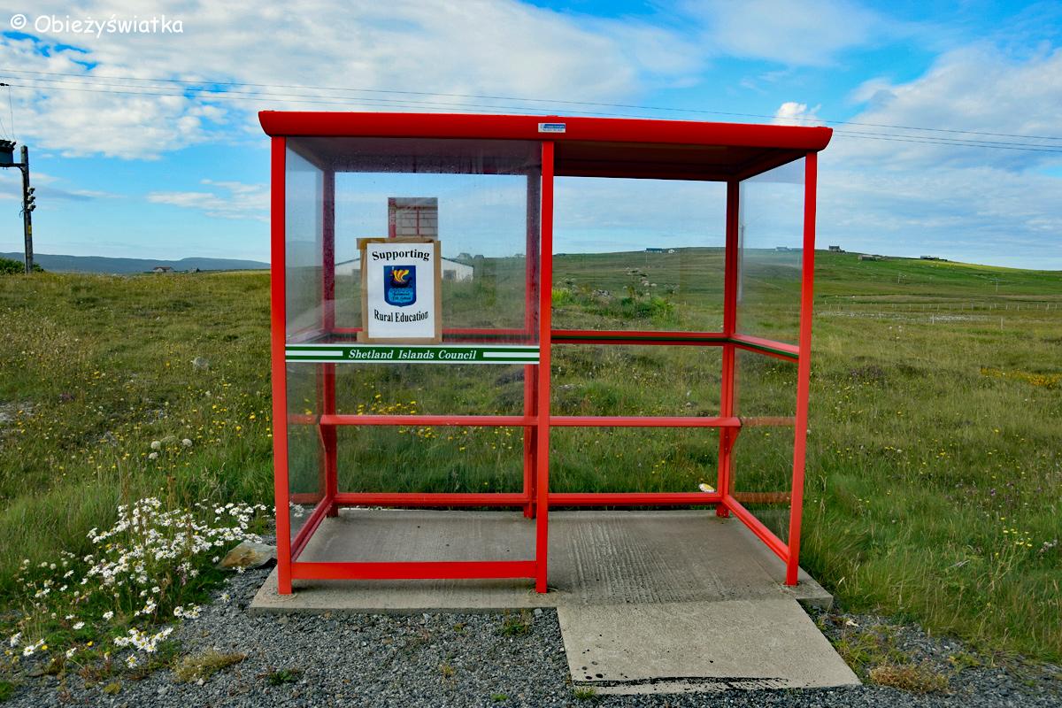 Zwykły przystanek - Unst Bus Shelter, Wyspy Szetlandzkie 2015