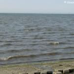 Z wodą, Wattenmeer 2009