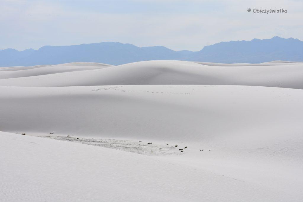 Na całej połaci śnieg ... czy piasek? White Sands National Monument, USA