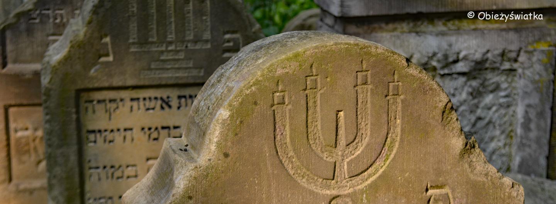 Ślady żydowskie w Tarnowie