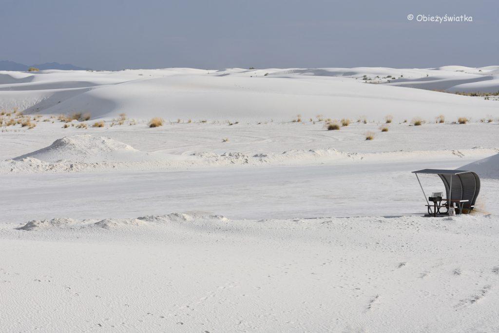Śnieżnobiałe wydmy w White Sands National Monument, USA