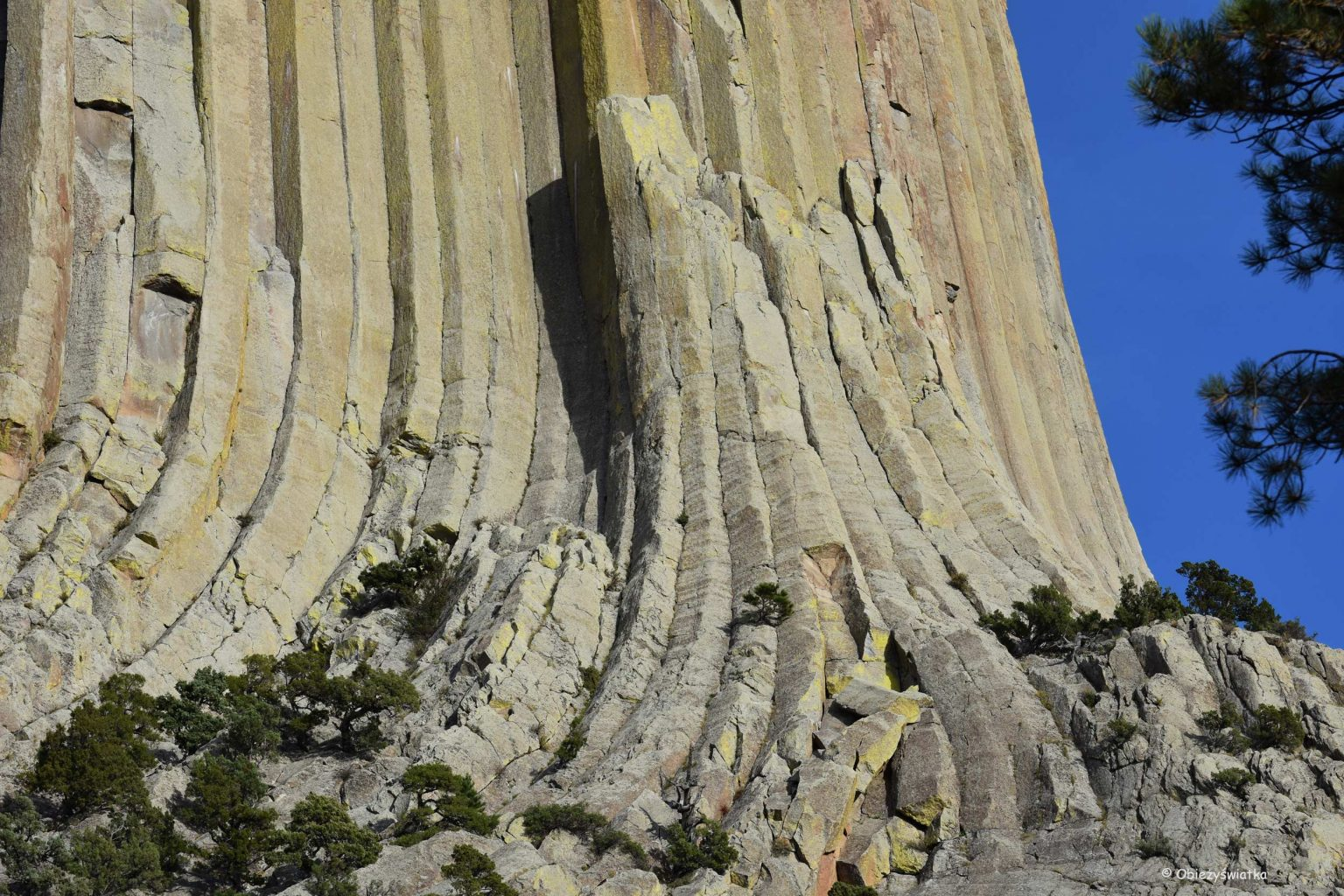 Słupy bazaltowe, Devils Tower, Wyoming, USA