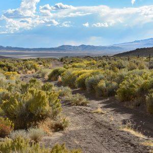 Historyczna droga Pony Express w Nevadzie