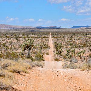 W drodze do trójstyku Nevada-Arizona-Utah