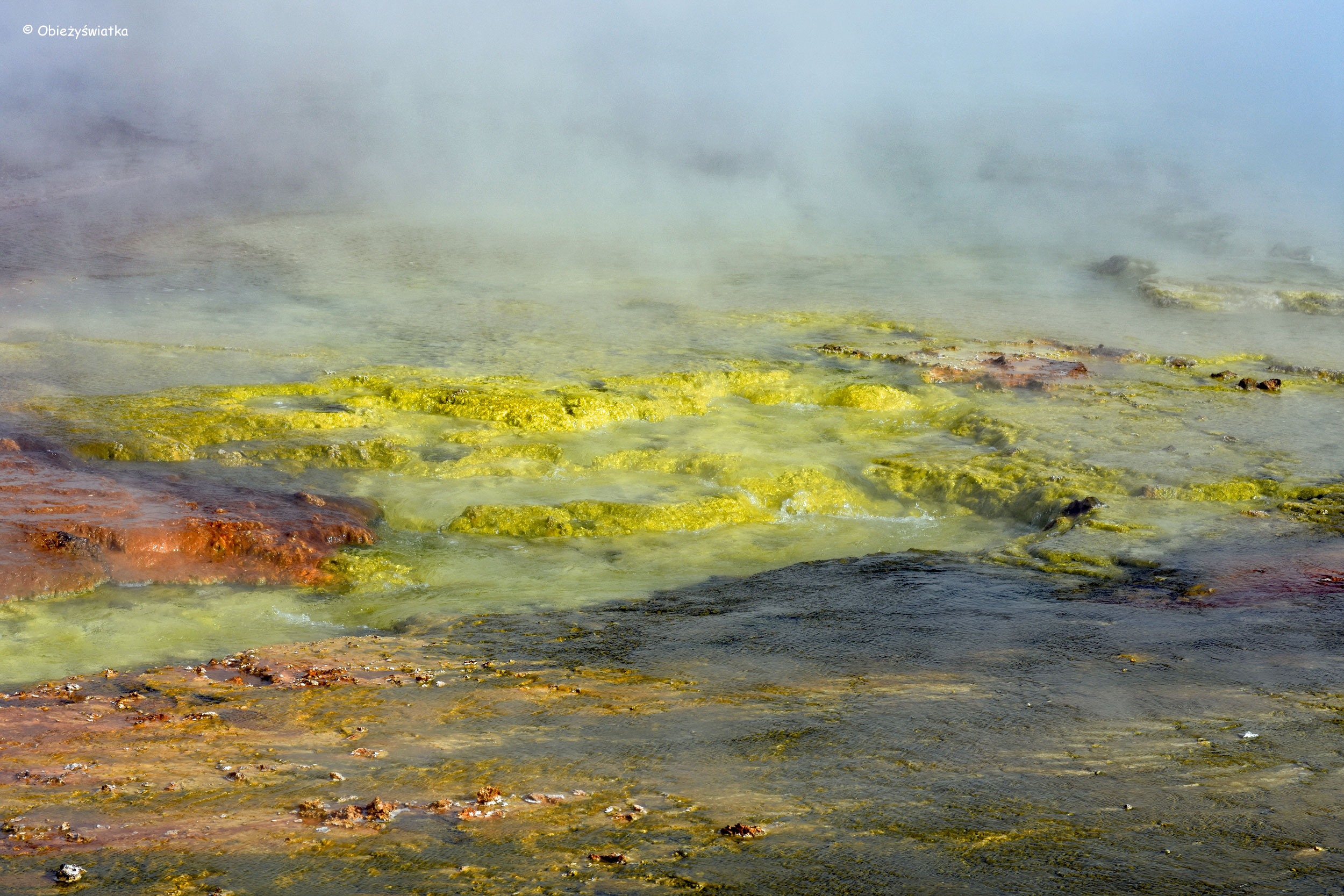 Przy Grand Prismatic Spring, Park Narodowy Yellowstone