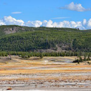 W drodze do Grand Prismatic Spring, Park Narodowy Yellowstone