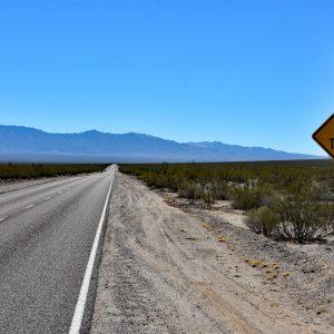 Uwaga na żółwie! / Pustynia Mojave