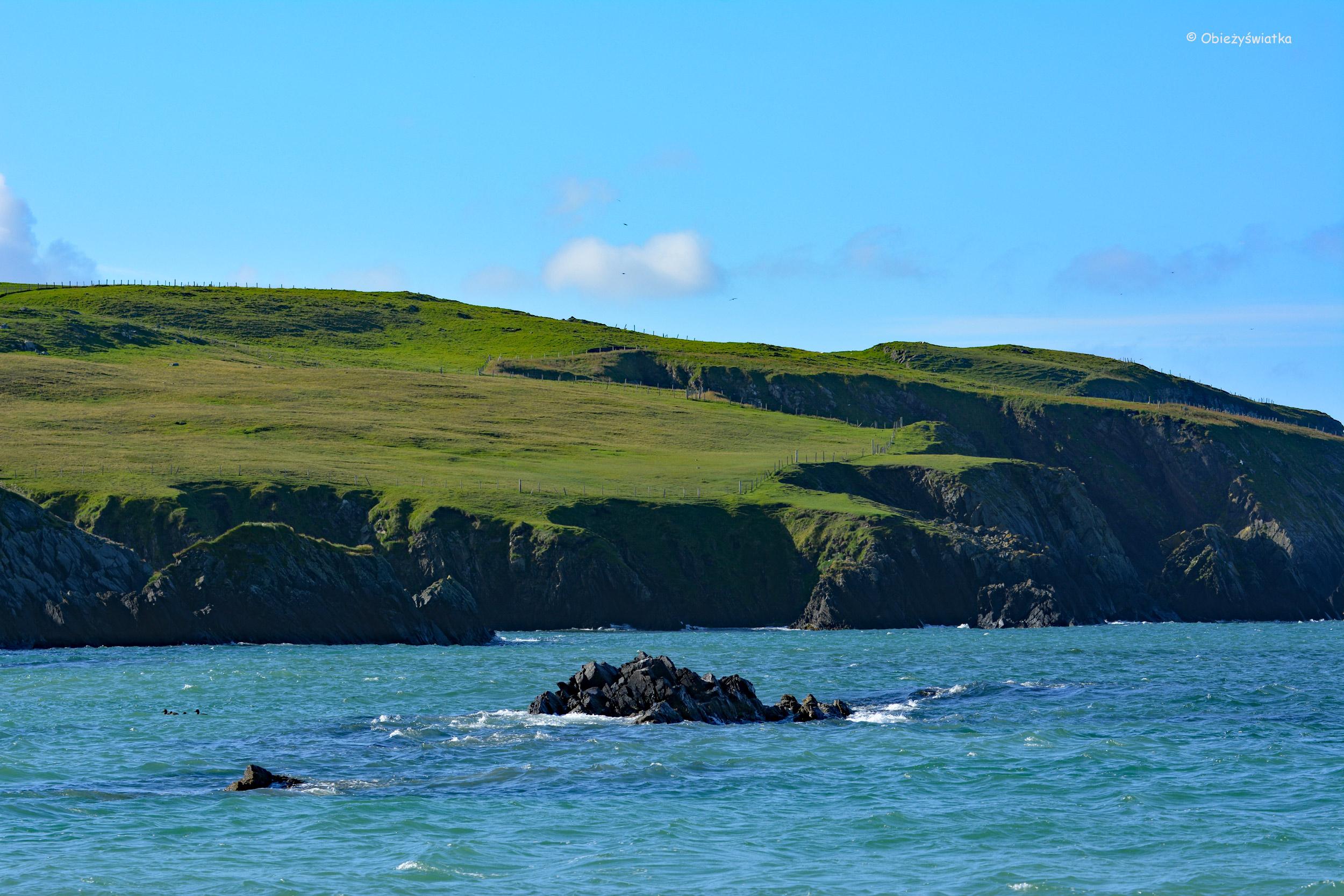Zielona St Ninian's Isle w słońcu
