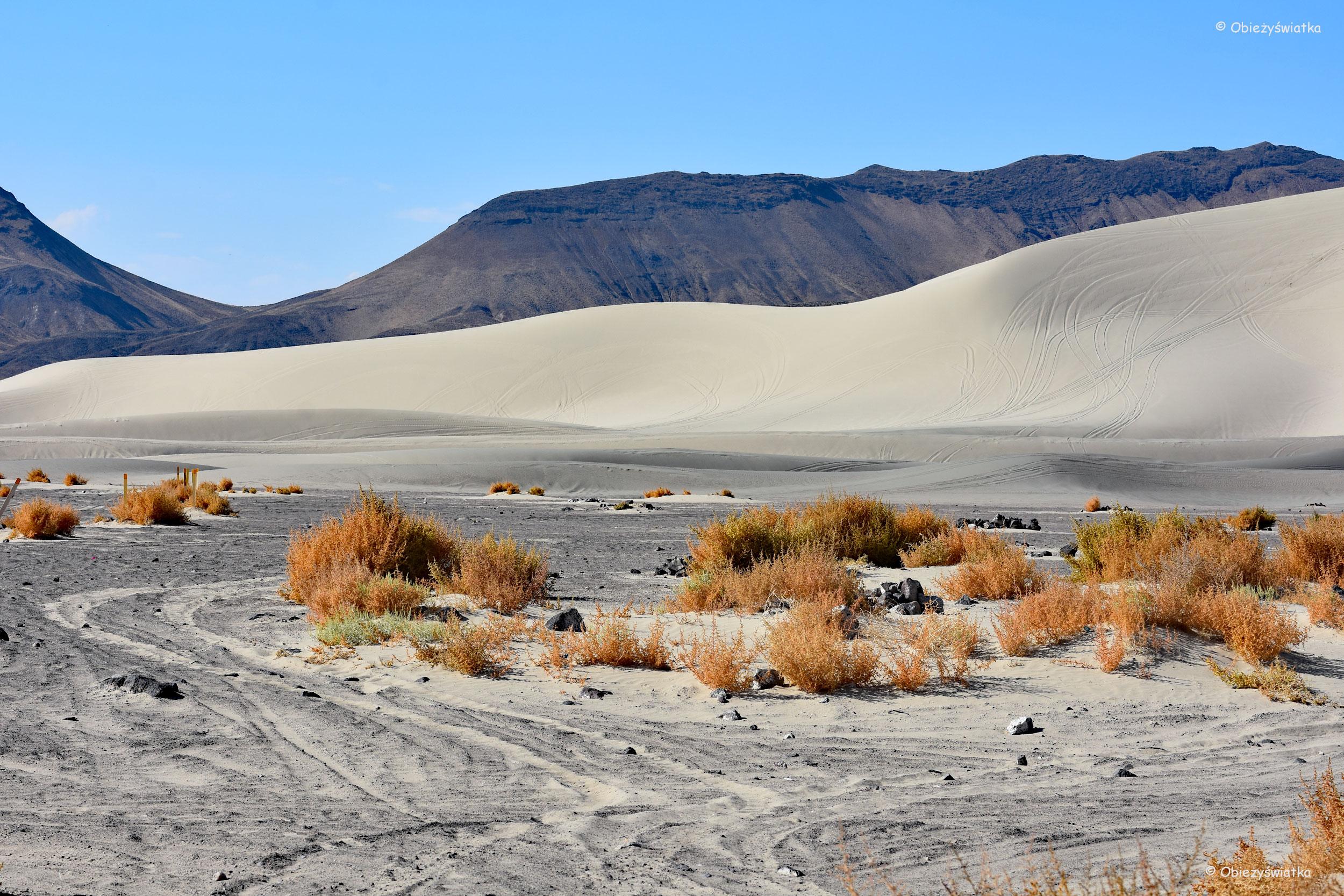 Piasek, piasek... - Wydmy / Sand Mountain, Nevada