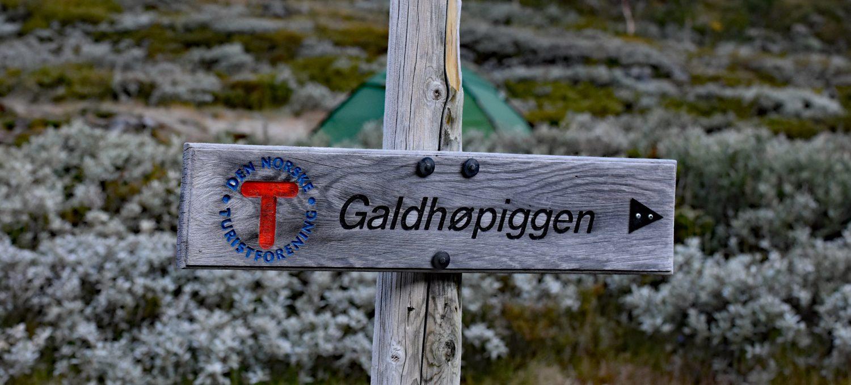 Drogowskaz - Galdhopiggen