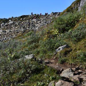 Na pierwszym odcinku szlaku na Galdhopiggen