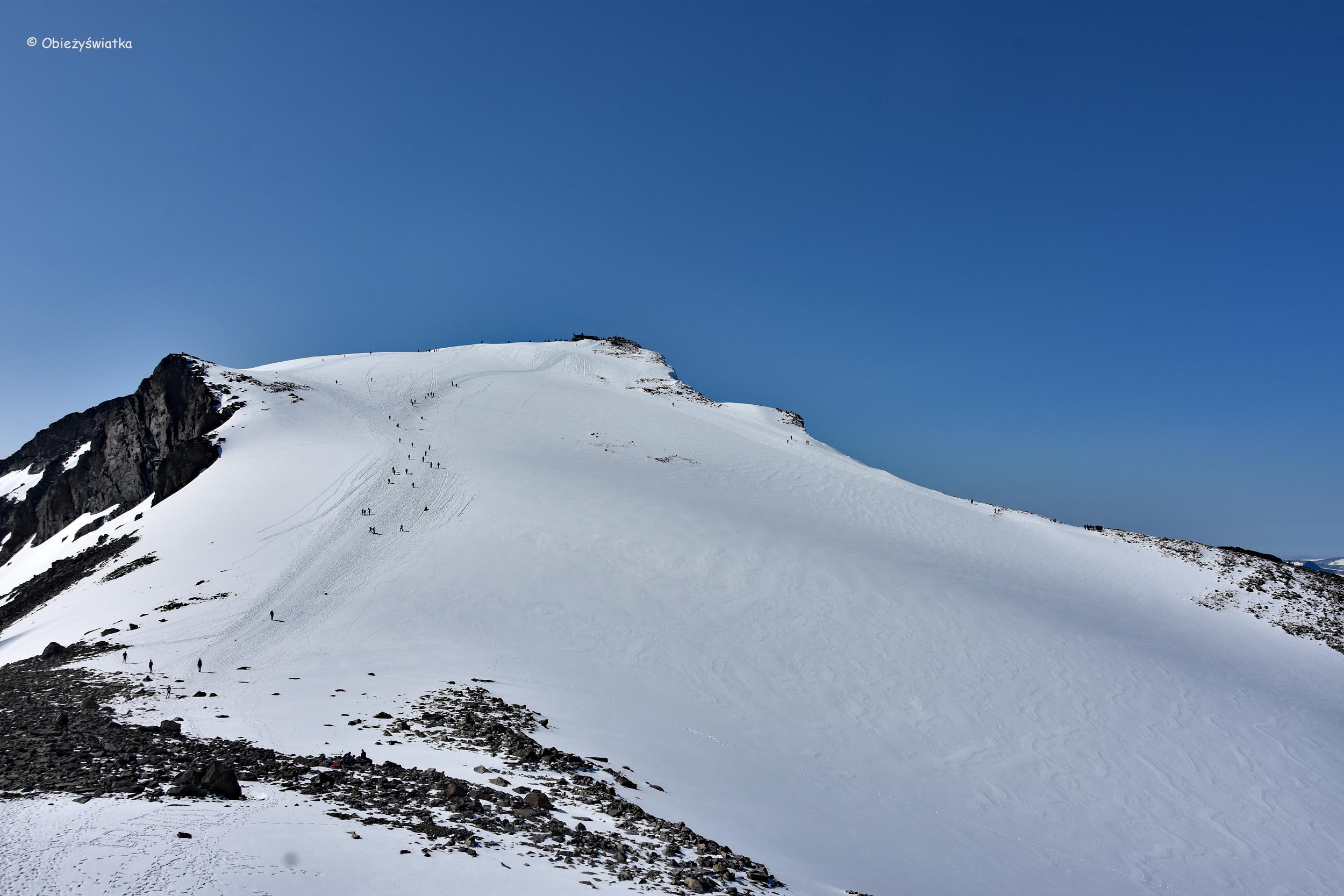 Widok na Galdhopiggen ze szczytu Keilhaus topp