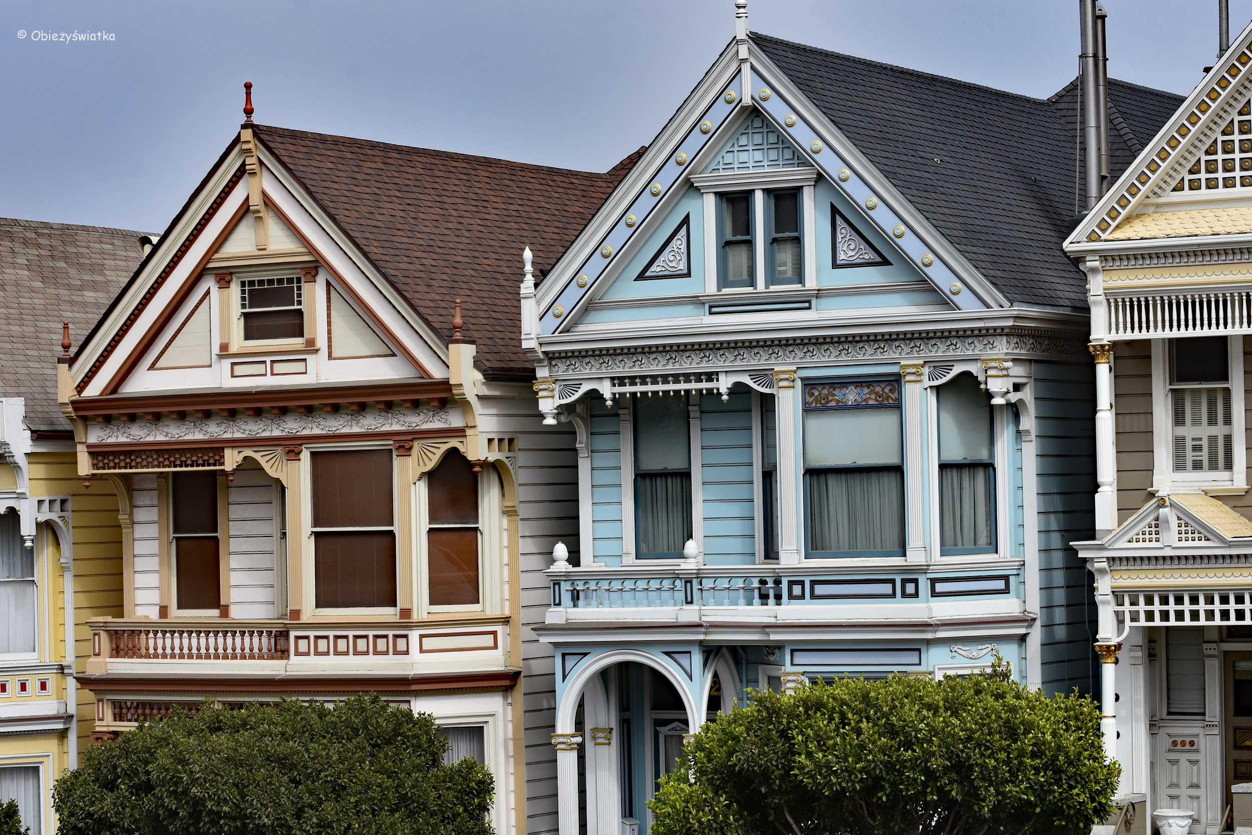 Painted Ladies, czyli Malowane Damy w San Francisco