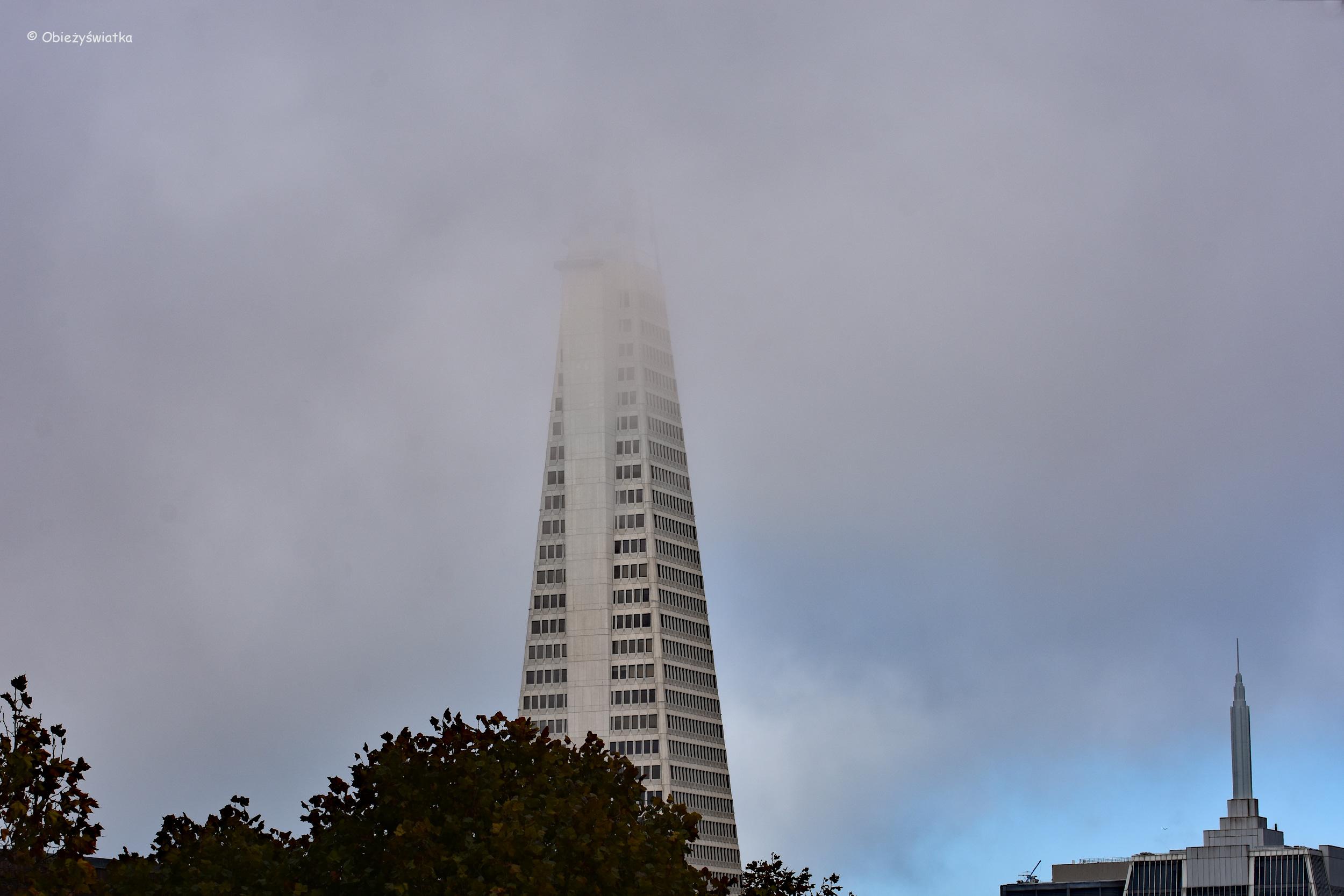 Transamerica Pyramid - najwyższy (jeszcze) budynek San Francisco