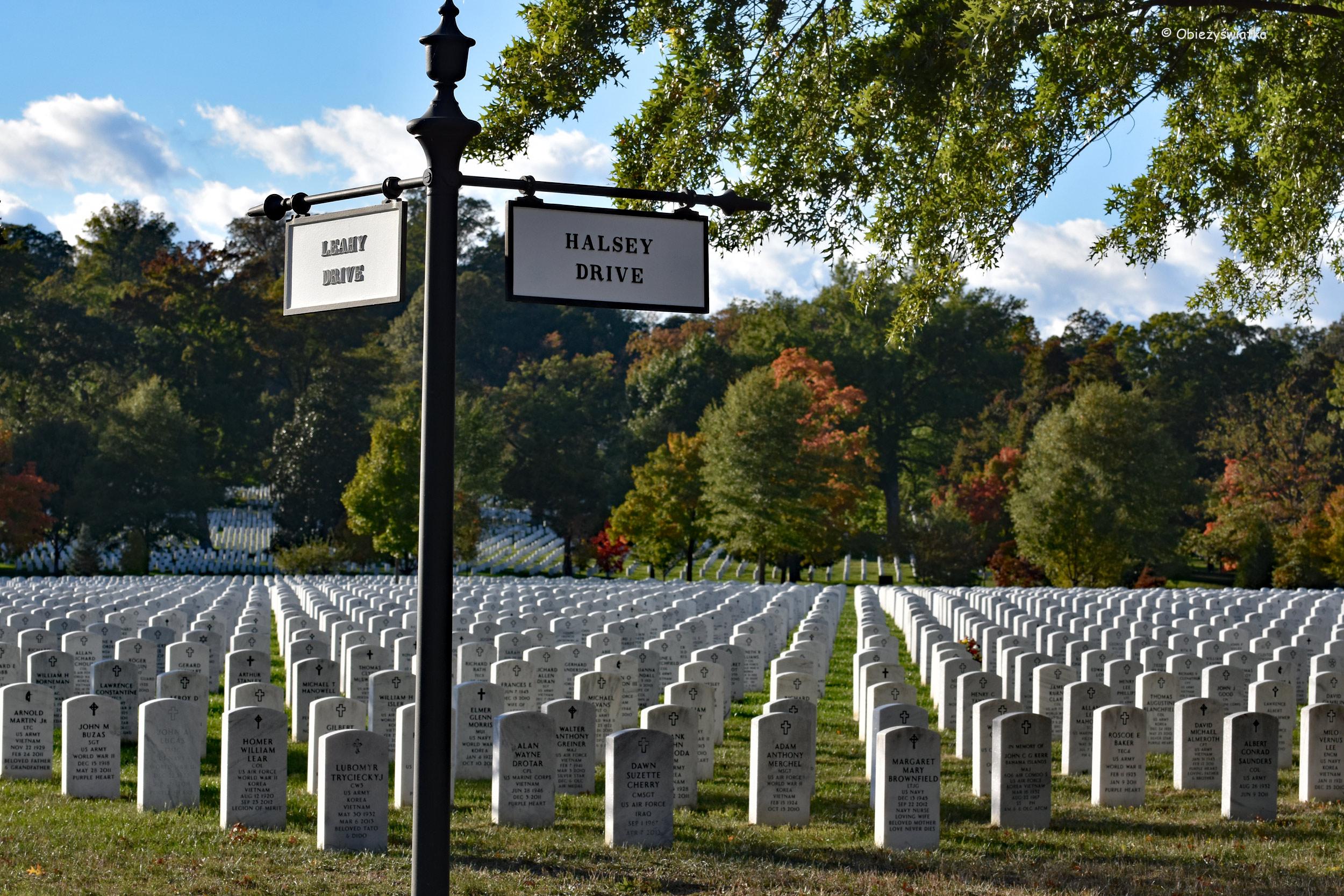 Skrzyżowanie alejek - Cmentarz Narodowy w Arlington