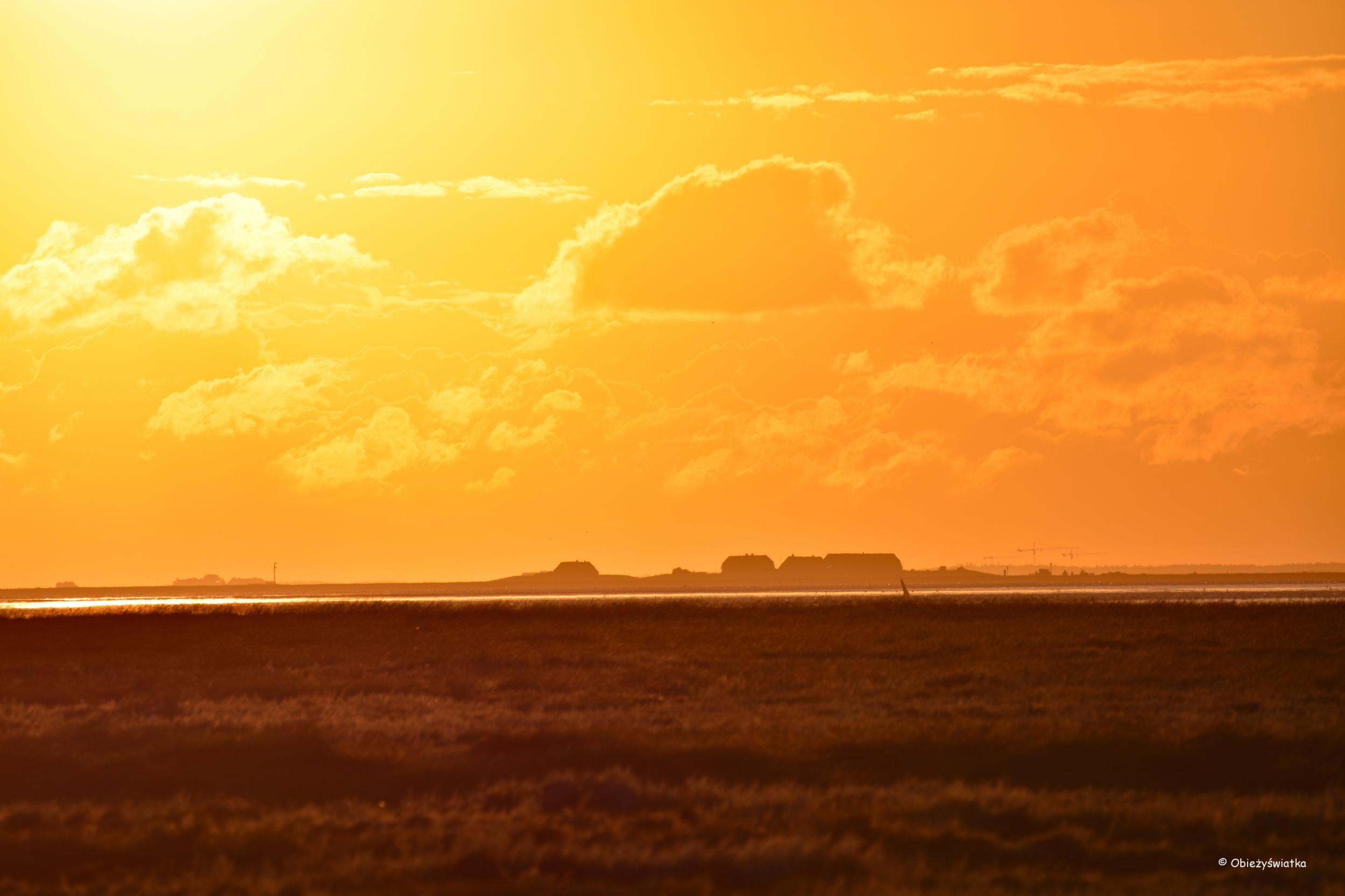 Halligen i Morze Północne o zachodzie słońca