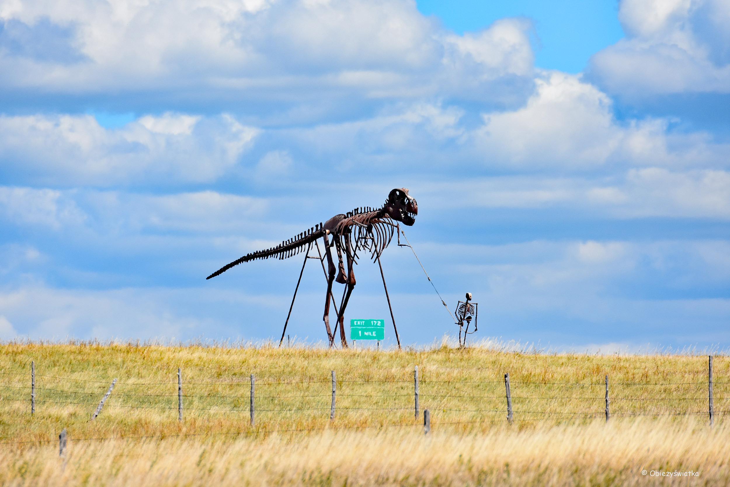 Szkielety - Zobaczone na Interstate 90, South Dakota