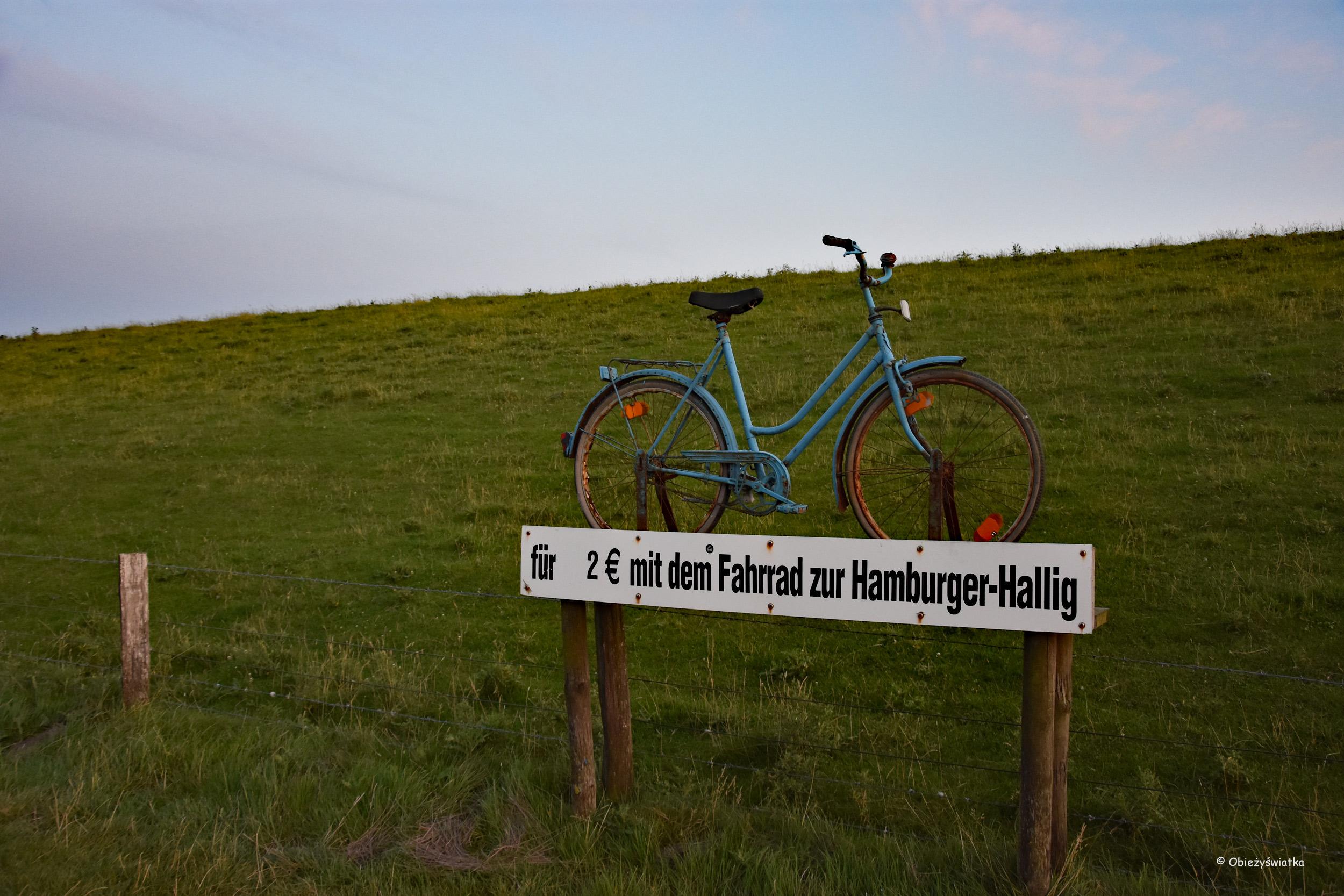 Rowerem na Hamburger Hallig
