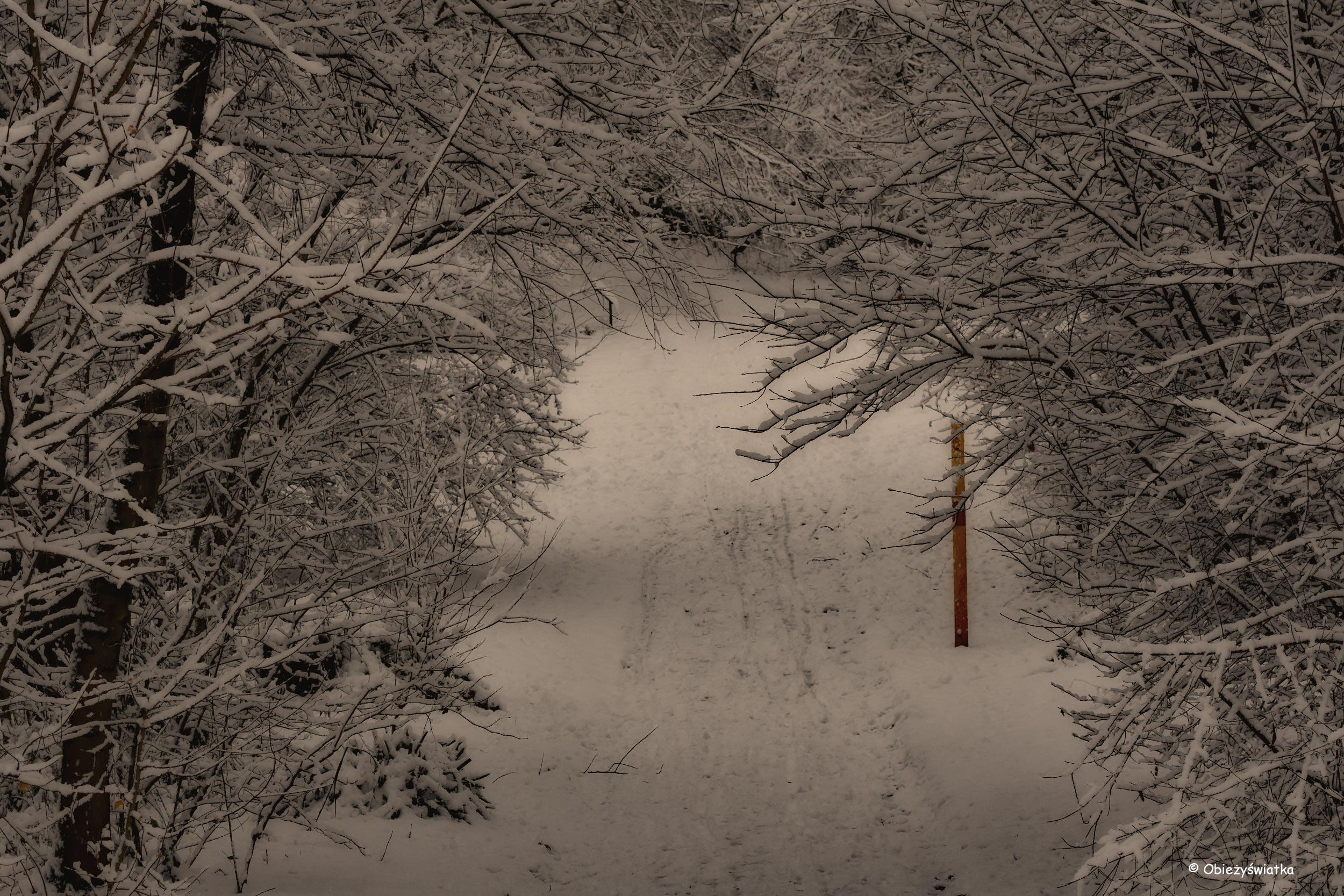 Brama ze śniegu