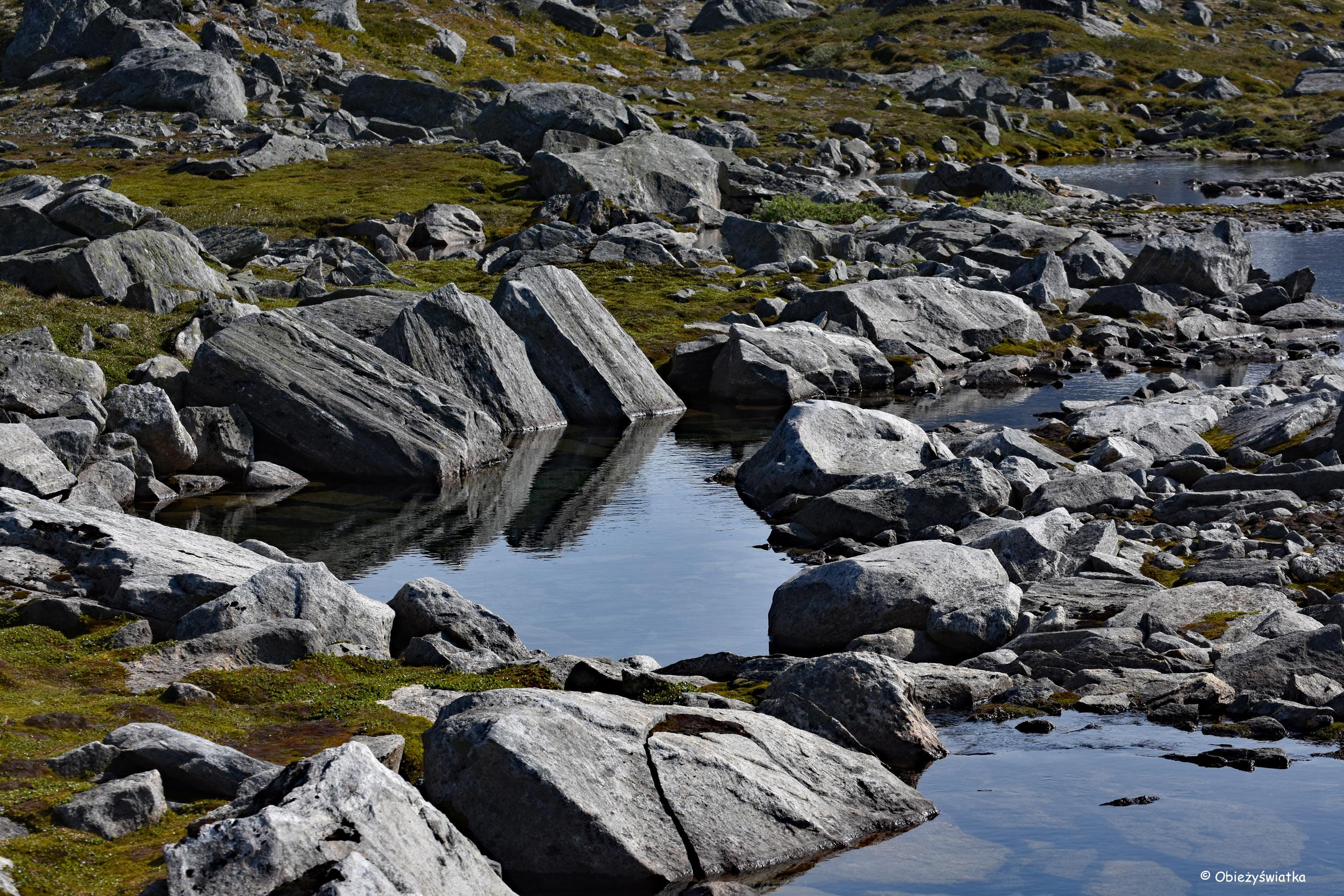 Przeskakując po kamieniach - Gamle Strynefjellsvegen, Norwegia