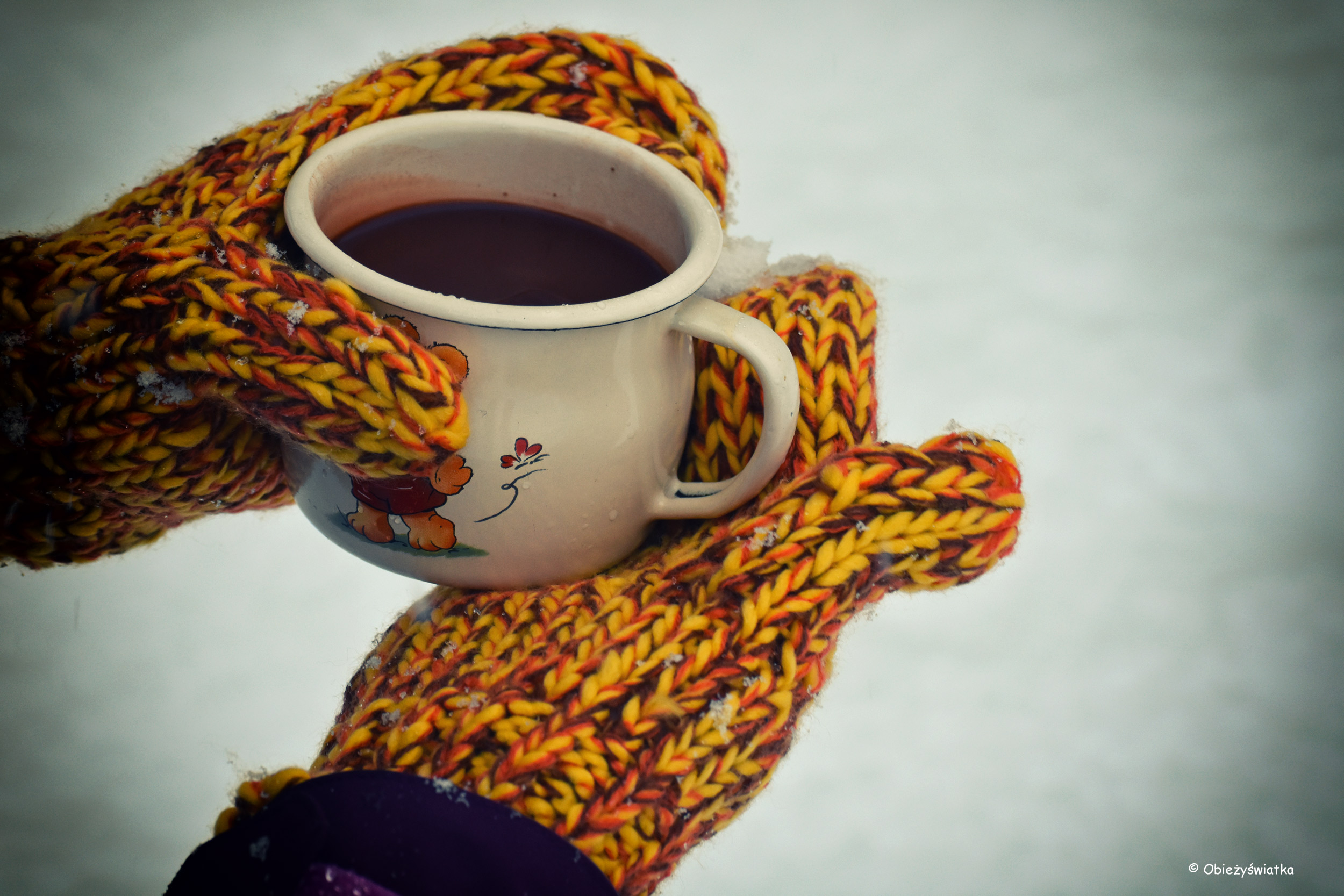 Gorąca czekolada zimą, czyli pikinik w śniegu