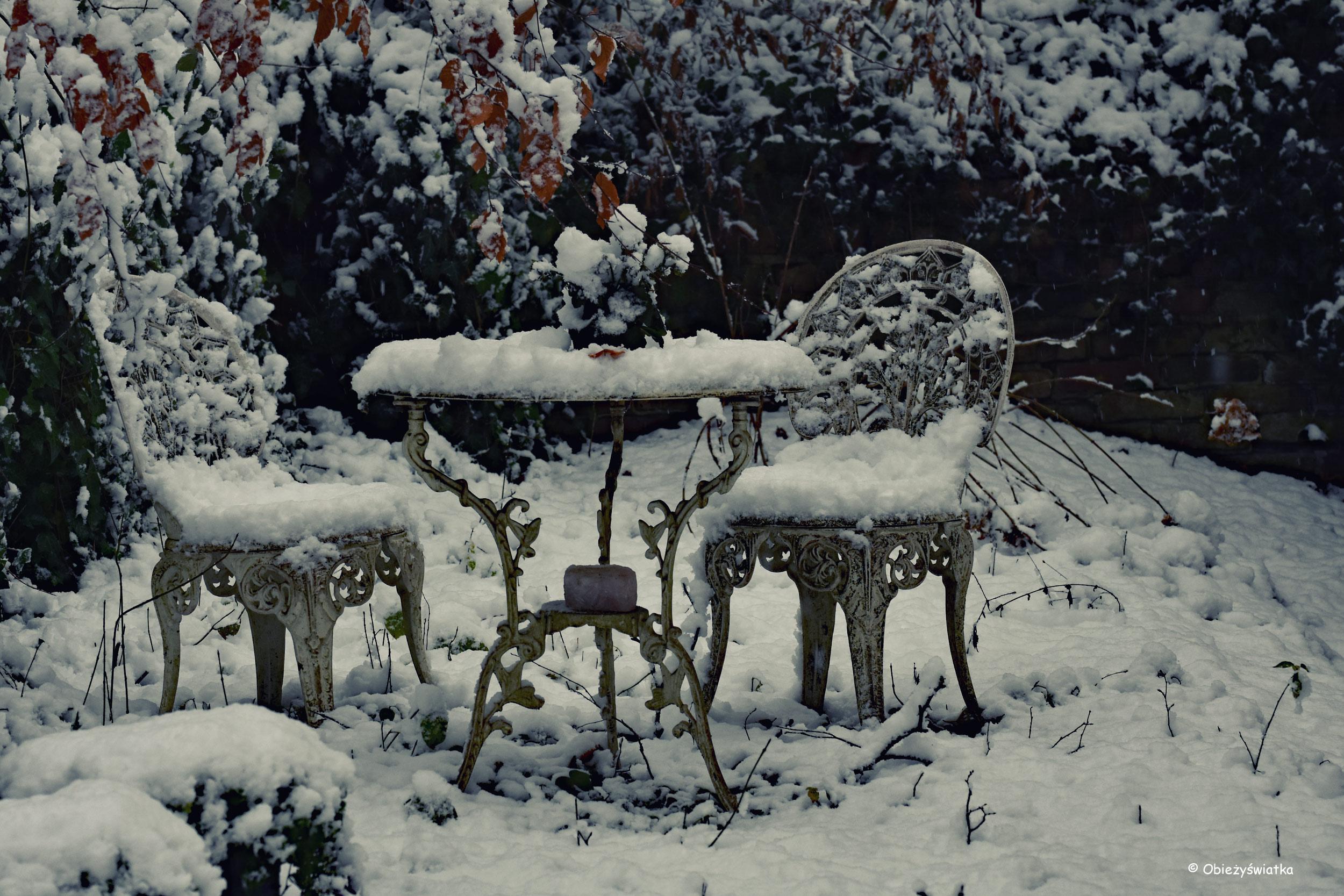 Herbata pod śnieżną pierzynką