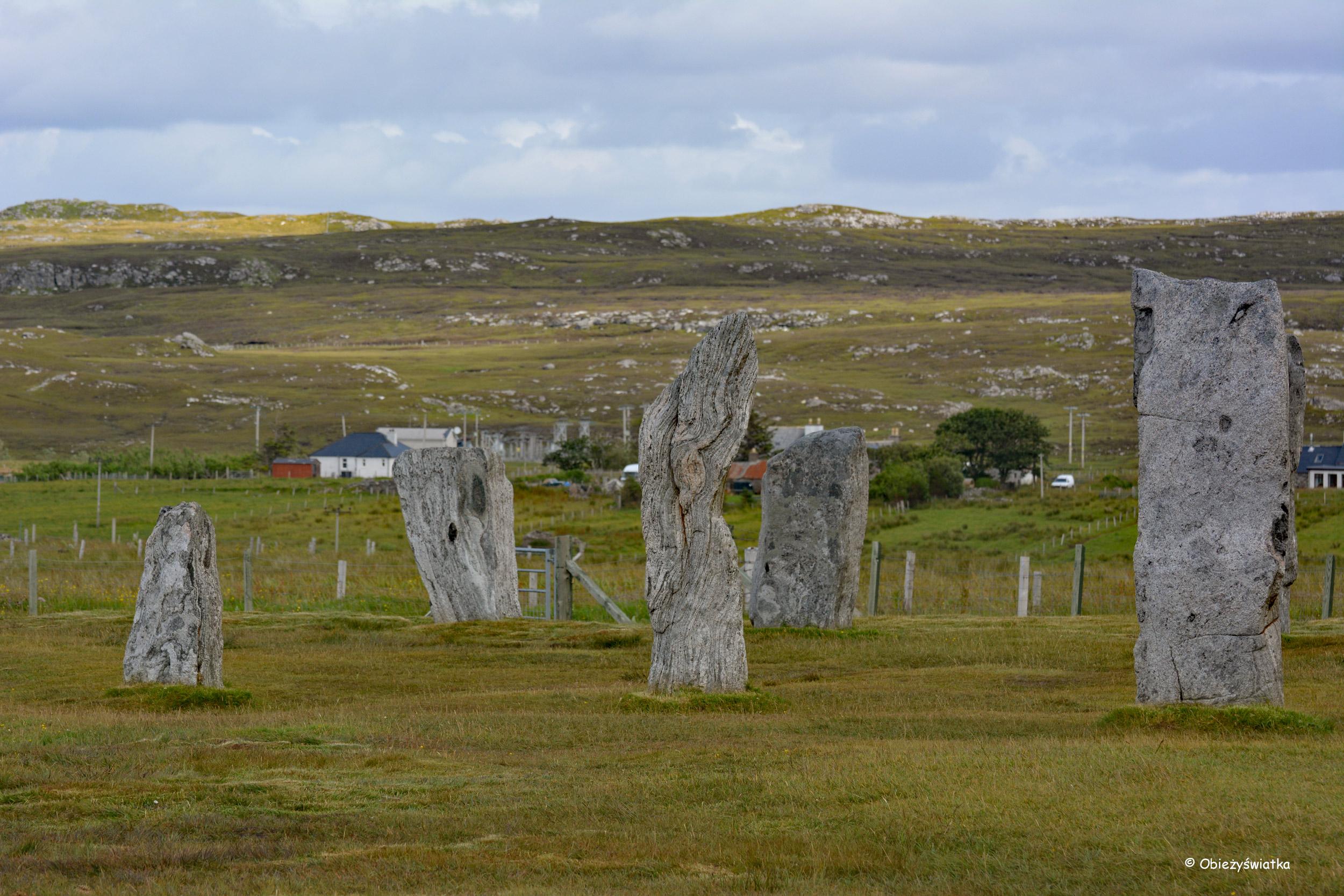W kamiennym kręgu megalitów w Callanish/Calanais, Lewis and Harris, Szkocja