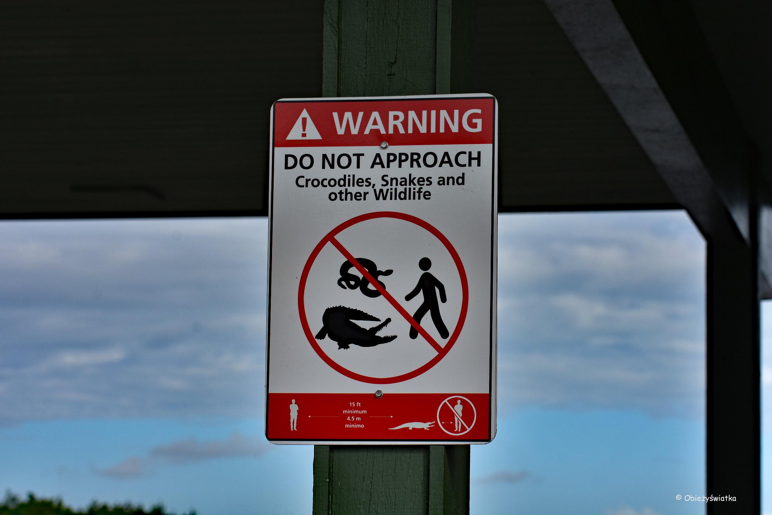 Nie drażnić aligatorów i spółki - Everglades, Floryda