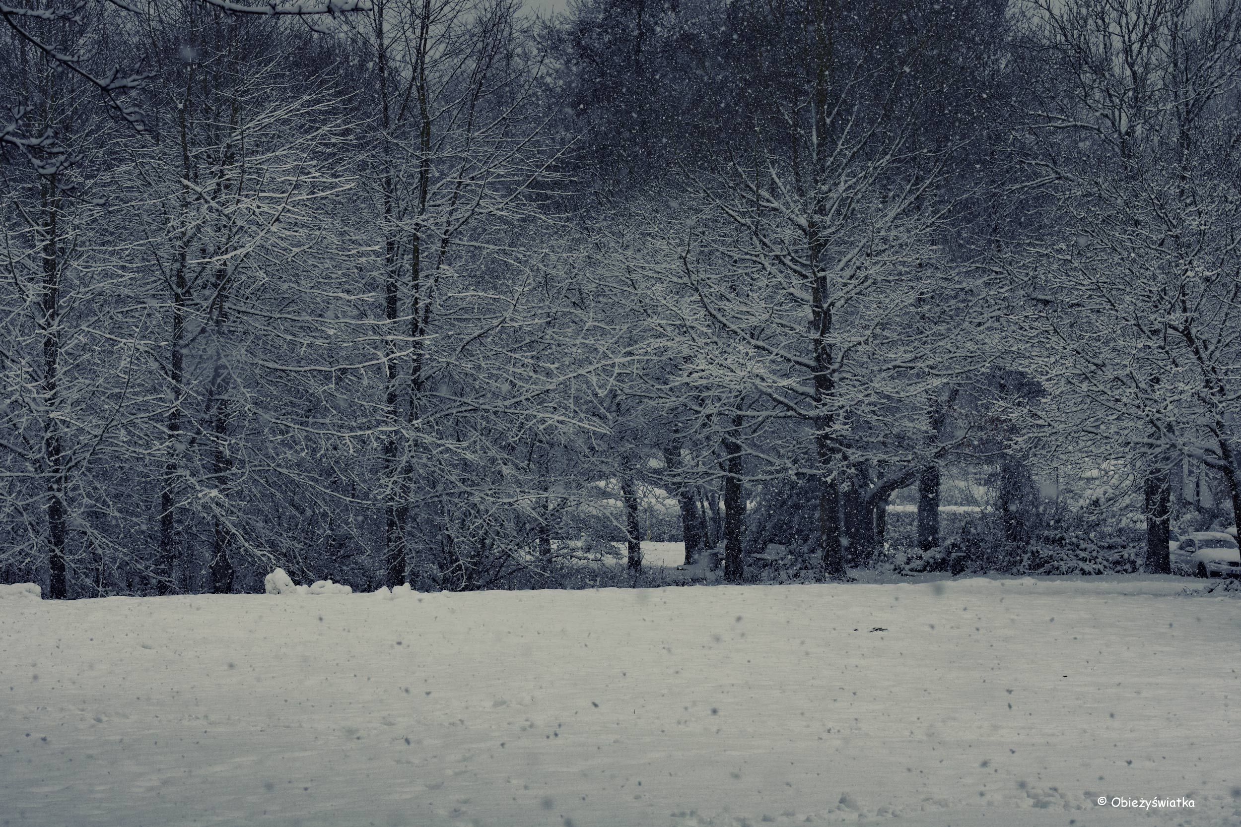 Śnieżnie